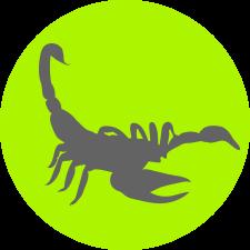 Biologia – Escorpiões